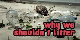 why we shouldn't litter